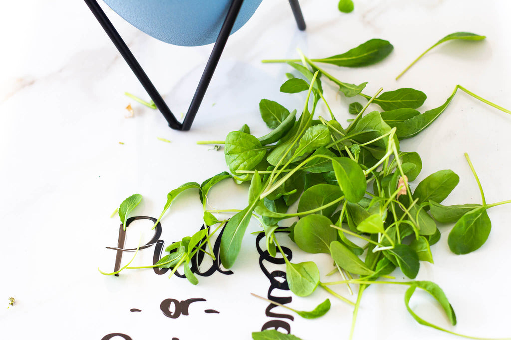 cut arugula leaves on table with writing pull or cut