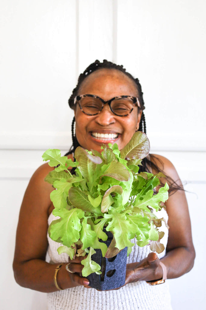 Similing Caribbean woman holding hydroponic mason jar grown lettuce mix that is ready to be harvested