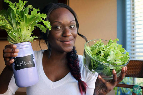 holding a purple mason jar hydroponic kit with lettuce