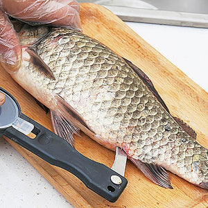 Fish Scale Remover - Sleekily