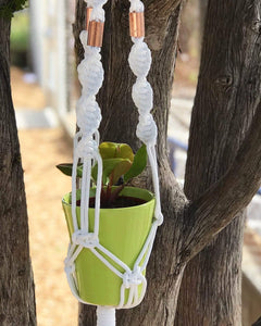 Dana Martinez Workshop Macrame Plant Hanger