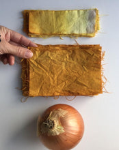 Load image into Gallery viewer, Kaitlin Bonifacio Workshop Natural Dyeing with Onion Skins