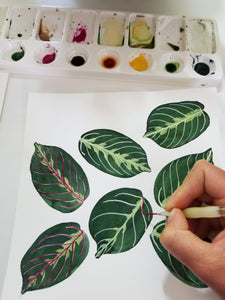 Logan Parsons Workshop Gouache Botanical Patterns