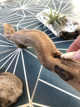 Load image into Gallery viewer, Stephanie Rapisardo Workshop Driftwood Decor