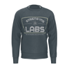 Strens'ms Labs