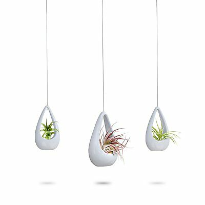 3 Hanging White Ceramic Planters