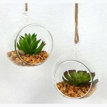 Hanging Round Shape Glass Terrarium set of 6
