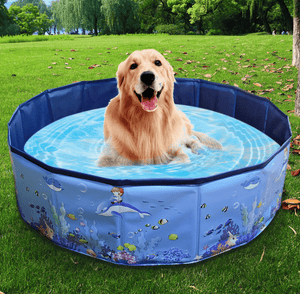 Kid's Swimming Pool Hard Plastic Backyard Pool Type C / 160x30CN/63x11.8IN / 4-9 working days by DHL/Fedex/UPS Ableasy