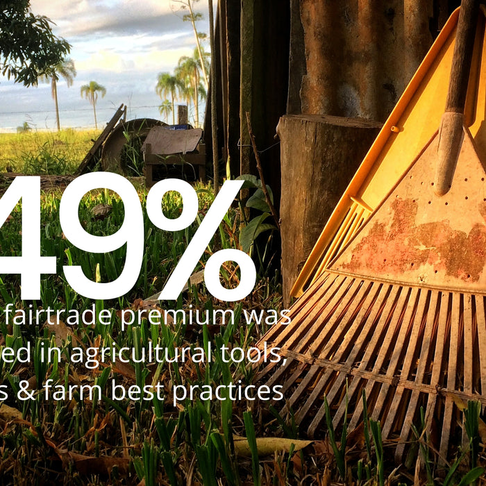 Fairtrade cotton impact report