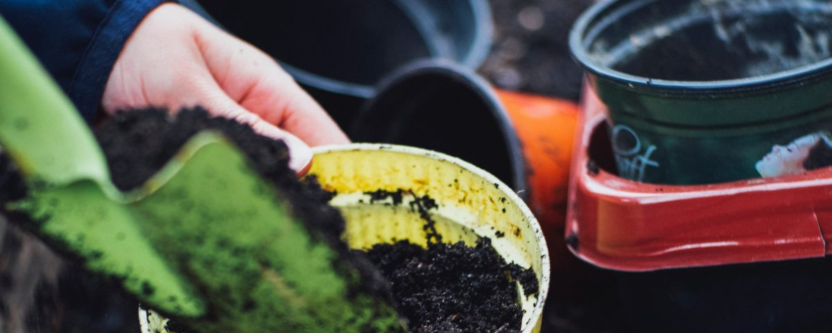 Your simple guide to backyard composting