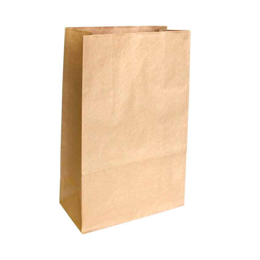 EP-CHK20 Large Checkout Paper Bags - Set of 50