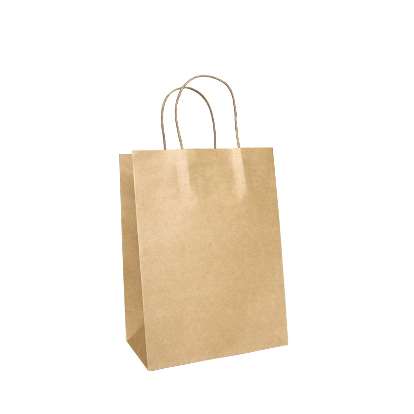 EP-TH01 Small Twisted Handle Paper Bags - Set of 25