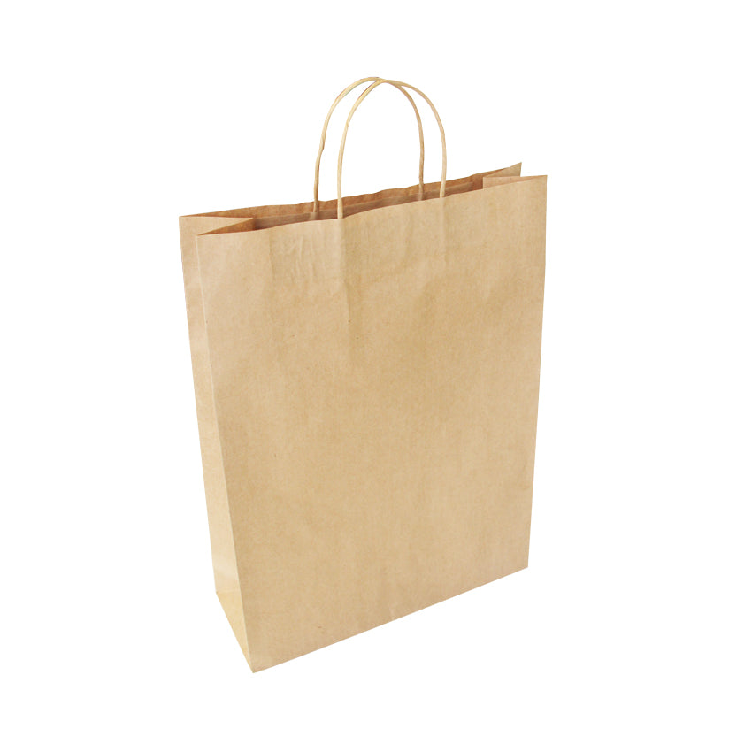 EP-TH03 Large Twisted Handle Paper Bags - Set of 25