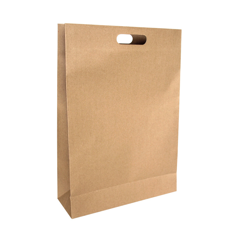 EP-L11 Large Punched Out Handle Paper Bags - Set of 25