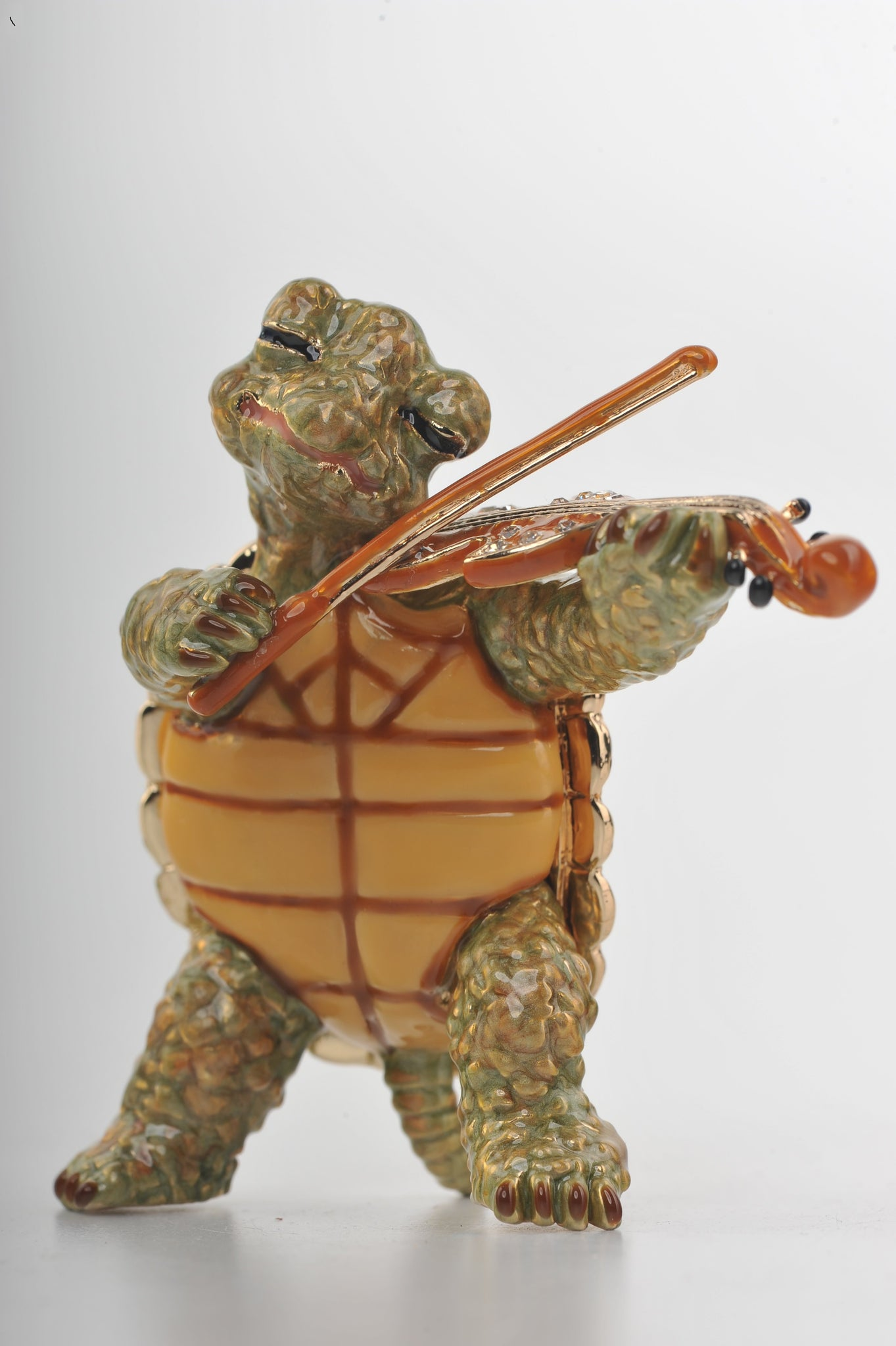 Turtle Playing the Violin