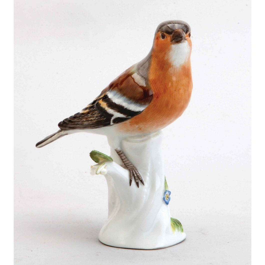 A Meissen Porcelain Common Chaffinch Bird