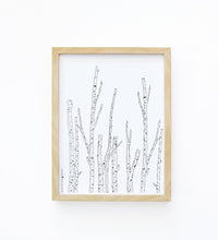 Art Print - Birch Branches