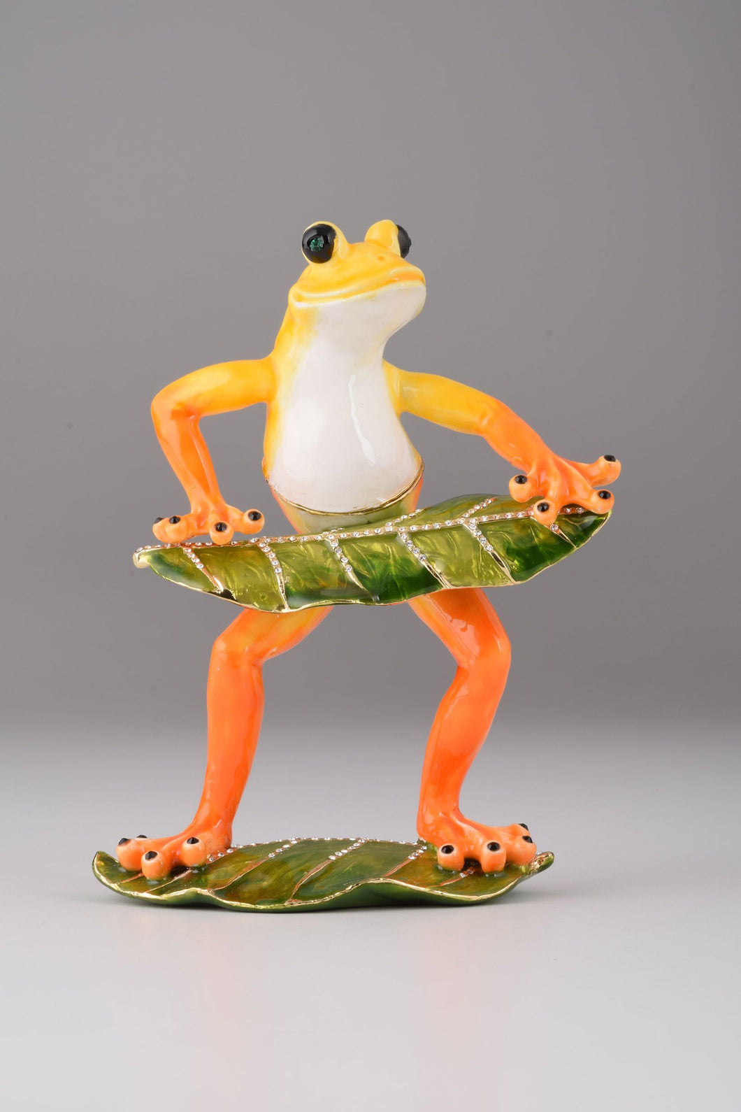 Frog Playing on Keyboards