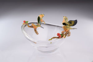 Colorful Birds on Glass Plate