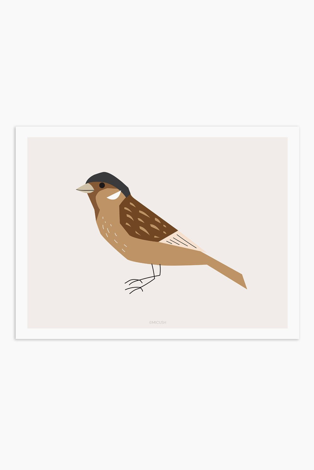 Art Print - Bird - Sparrow