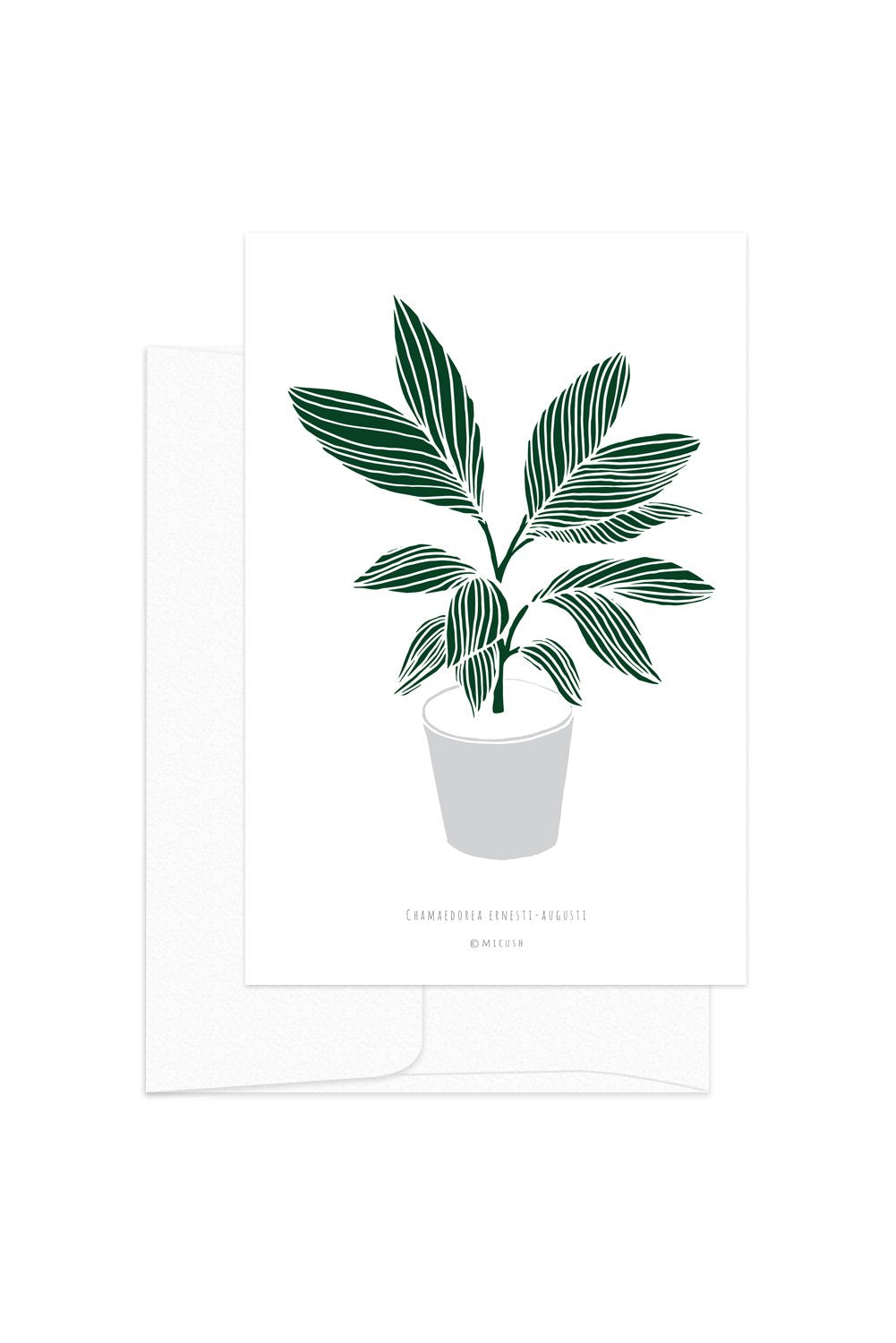 Card - Botanical - Chamaedorea