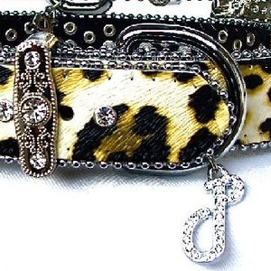 Leather Leopard Print Dog Collar