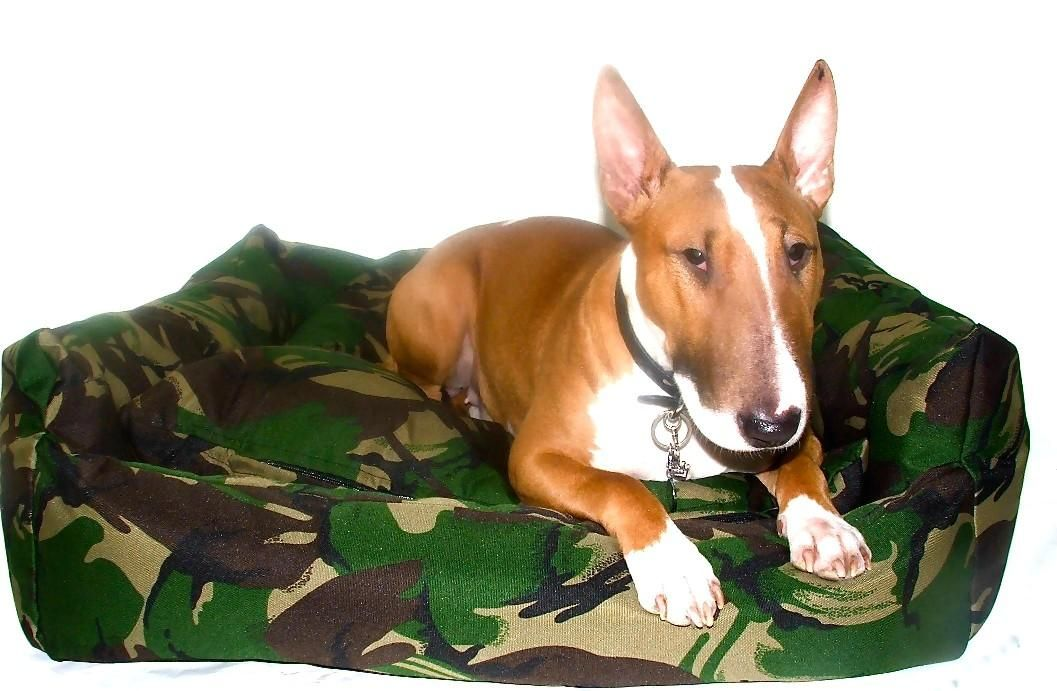 Military Style Waterproof Dog Bed
