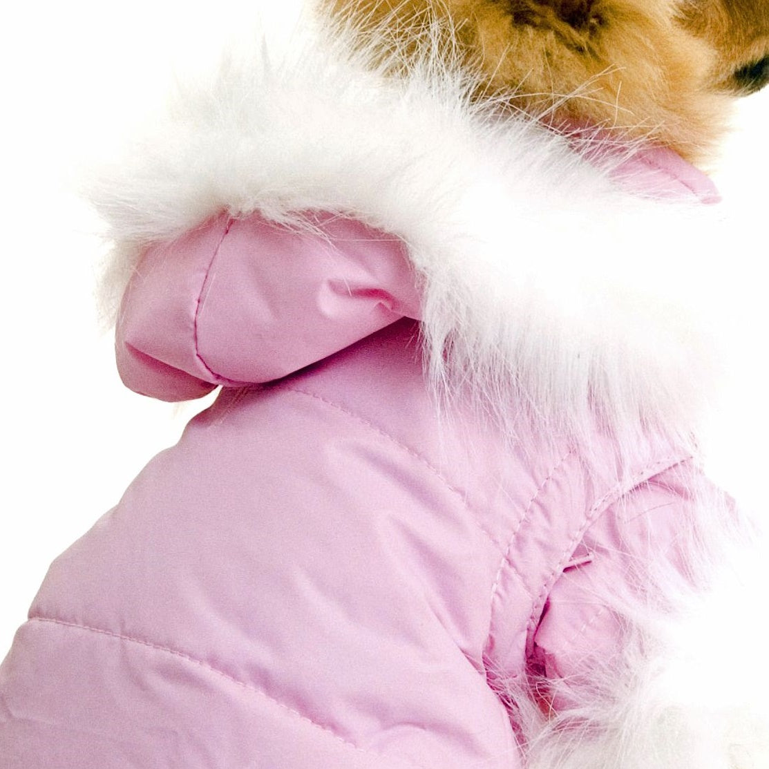 Nosy Parka for dogs in Pink