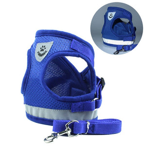Puppy or Small Dog Reflective Harness with Lead
