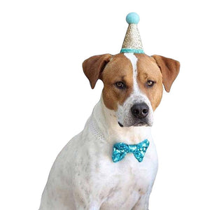 Sequin Birthday Hat and Bow Tie for Dogs or cats
