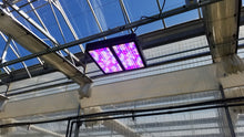 Load image into Gallery viewer, *BRAND NEW* VIPARSPECTRA V1200 1200W FULL-SPECTRUM LED GROW LIGHT