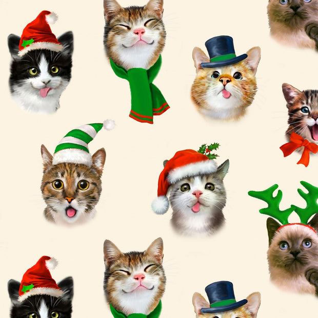 Cream Cat Christmas Selfies
