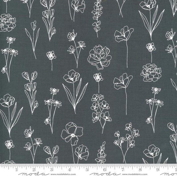 Illustrations Floral Doodle Graphite