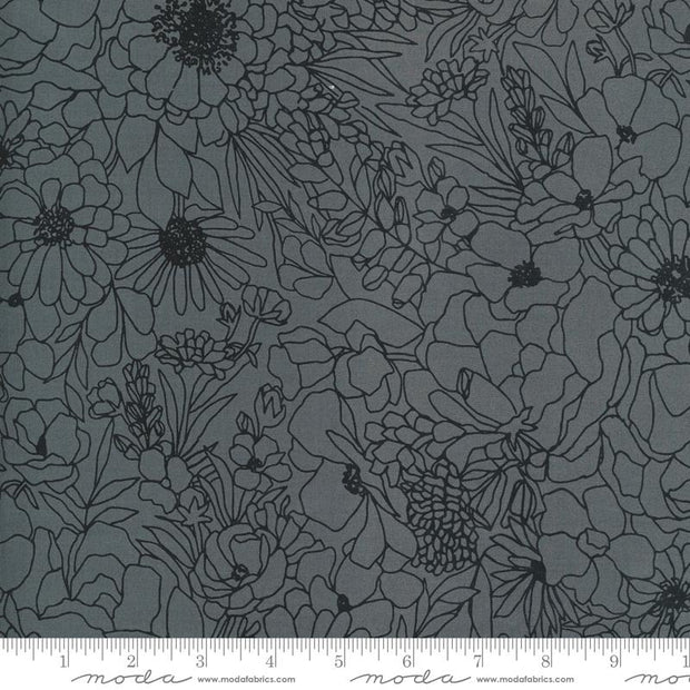 Illustrations Modern Florals Graphite