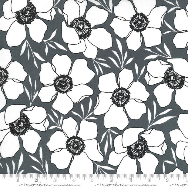 Illustrations Moody Florals Graphite