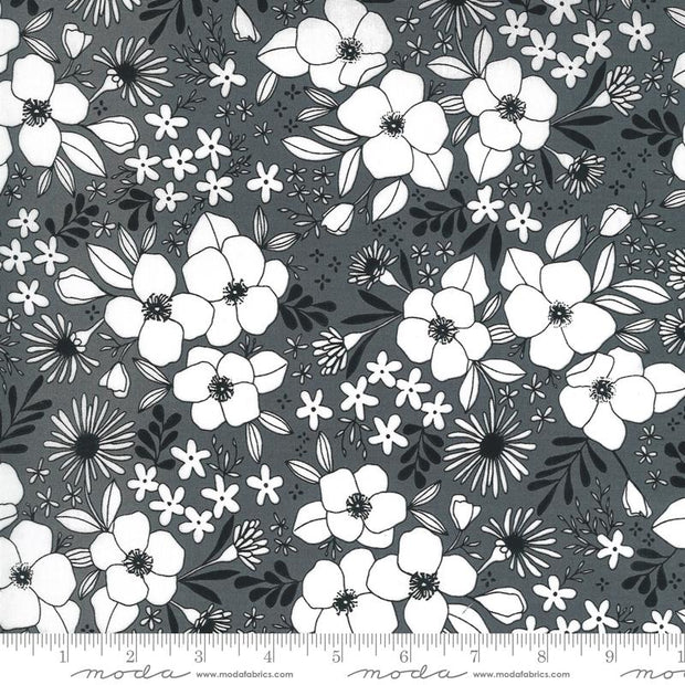 Illustrations Wild Florals Graphite