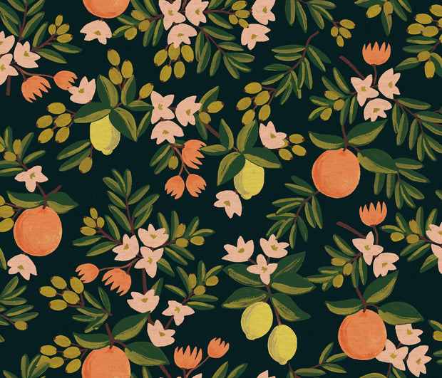 Primavera Citrus Floral Black Canvas