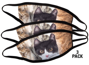 Cat Face Mask, Comes in Pack of 3.