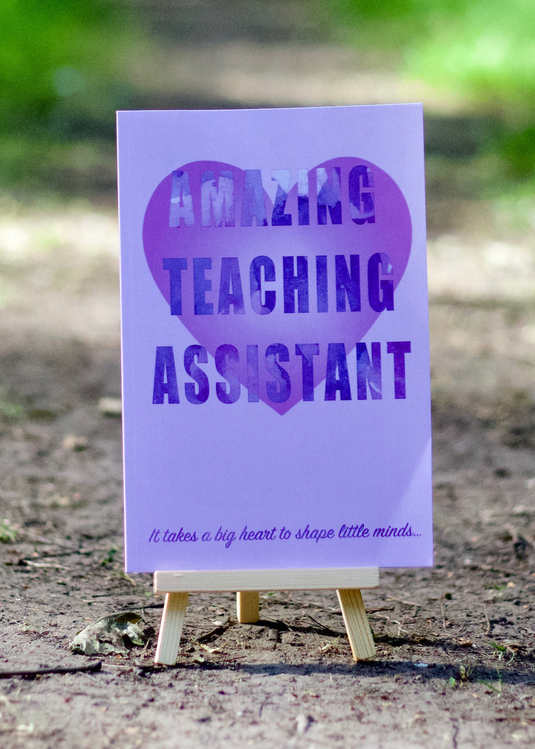 Amazing Teaching Assistant