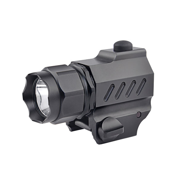 G01 Pistol Light