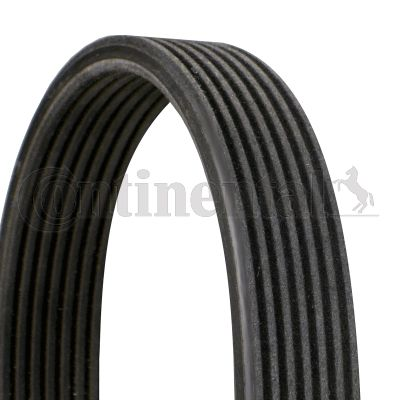 Porsche V-Ribbed Belt 7DPK2880