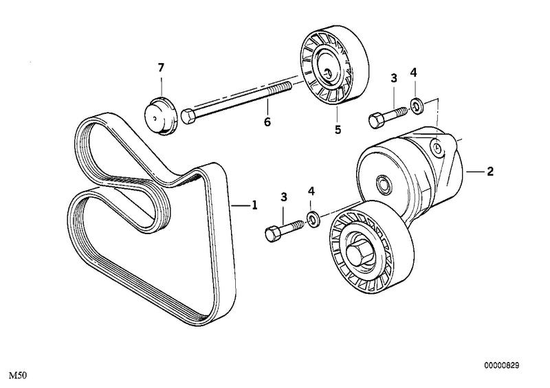 BMW Belt Tensioner and Pulley V-Ribbed Belt