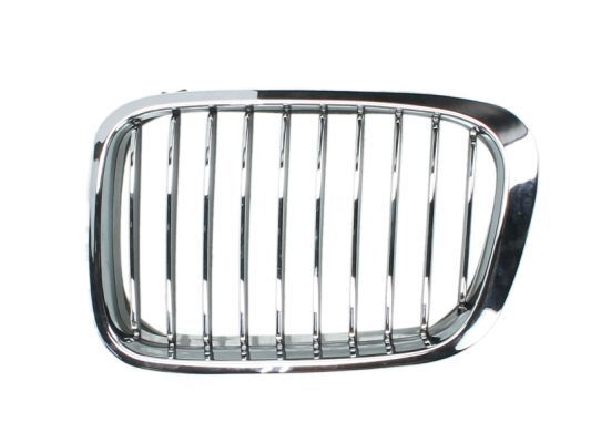 Genuine BMW Radiator Kidney Grille