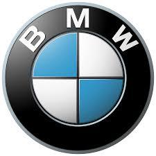 Genuine BMW Grommet Bonnet Hood Boot Trunk Emblem Set of 2