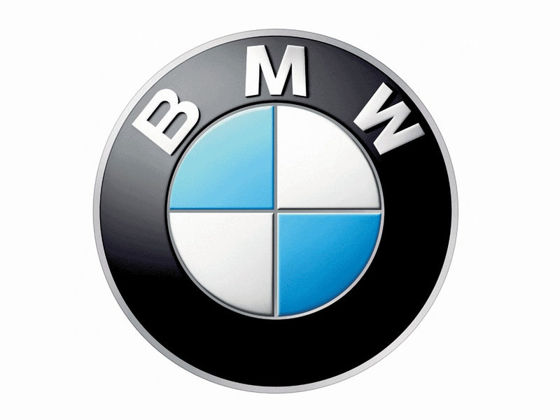 Genuine BMW Window Weatherstrip Lower Outer Left Black