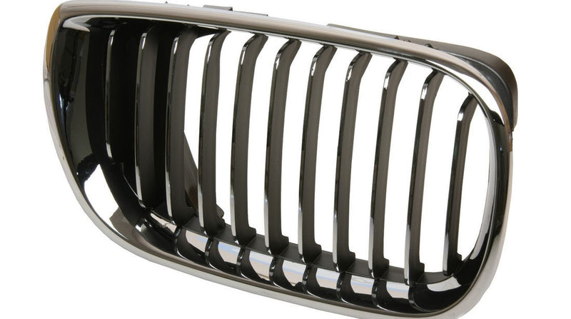 BMW Radiator Kidney Grille