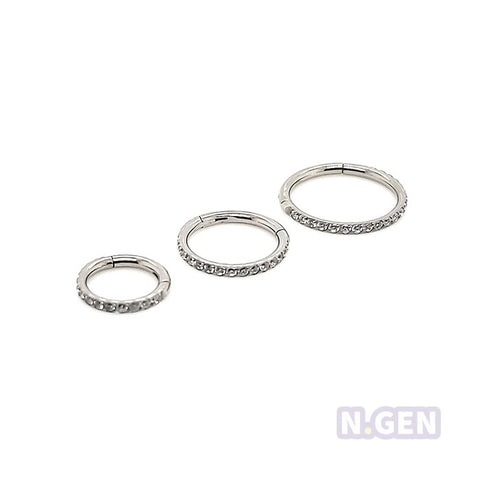 18g Hinged Segment Along the Side CZ set-F136 Eli Titanium