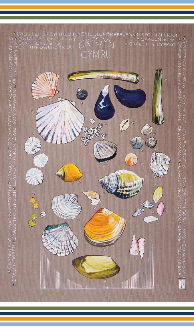 Ffion Gwyn - Heritage Tea Towel Collection - Shells / Cregyn