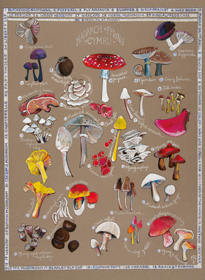 Ffion Gwyn - Heritage Tea Towel Collection - Mushrooms & Fungi / Madarch a Ffwng