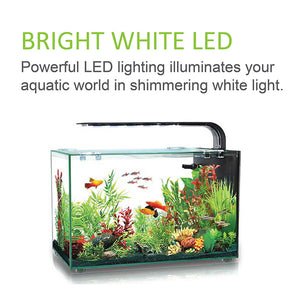 [Aquasyncro] Aquaclear Lux Designer Aquarium Fish Tank (with LED Lights and Filter)